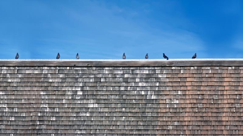 屋根塗装の耐用年数はズバリ10年が目安!塗り替えるべきタイミングを徹底解説